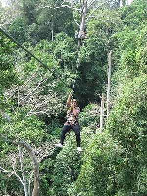 Flight of The Gibbon: a Thrilling Adventure in Pattaya | Pattaya