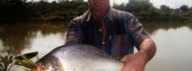 fishing-lake-pattaya-thailand